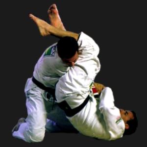 Джиу-джитсу - боевое искусство без оружия